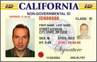 Drivers License International Permit - Driving