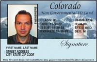 - Permit Drivers Driving International License