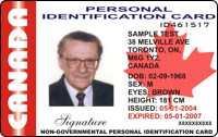 - Driving International Permit License Drivers