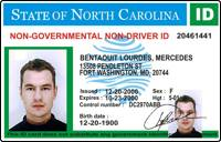- Permit Driving License International Drivers